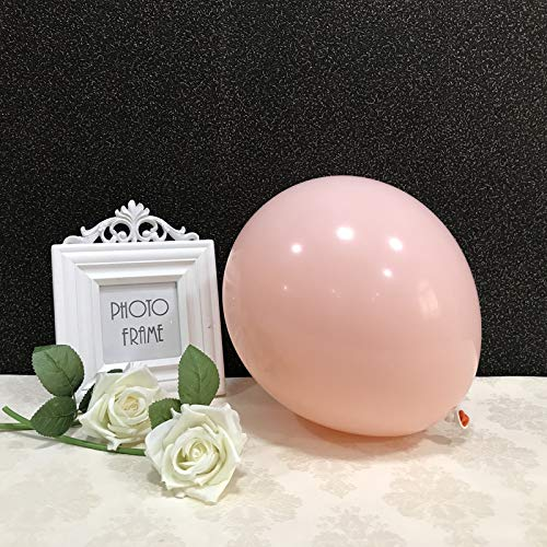 Party Pastel Balloons 100 pcs 10 inch Macaron Candy Colored Latex Balloons for Birthday Wedding Engagement Anniversary Christmas Festival Picnic or any Friends & Family Party Decorations-blush balloon (Balloons Giant Blush)