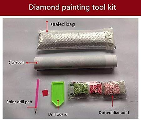 Room Park Kitchen 【2019 Latest Diamond Painting】5D DIY Diamond Painting Kit,Full Diamond Cross Stitch Craft kit Embroidery Rhinestone Cross Stitch Arts Craft,Family Living Room