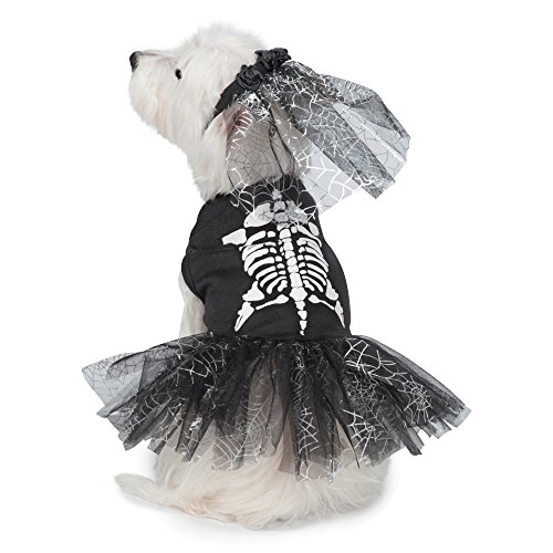 Dogs In Costumes For Halloween (Casual Canine Glow-in-the-Dark Skeleton Zombie Dog Costume, 12