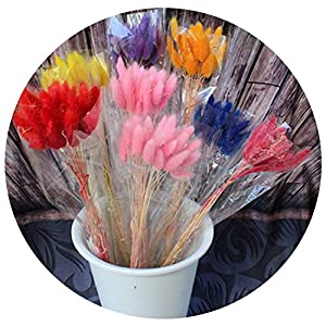 Surprise moment-Artificial Flowers 60pcs Long Dried Natural Flower Bouquets Colorful Lagurus Ovatus Uraria Picta Rabbit Tail Grass Bouquets Bunches Home Decoration 75