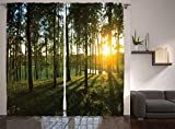 Ambesonne Farm House Decor Collection, Scene of Sunset in the Scattered Woods at Autumn and River Comes into View Print, Living Room Bedroom Curtain 2 Panels Set, 108 X 90 Inches, Olive Green Yellow For Sale