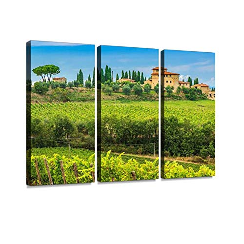 Chianti Vineyard Landscape with Stone House,Tuscany,Italy,Europe Print On Canvas Wall Artwork Modern Photography Home Decor Unique Pattern Stretched and Framed 3 Piece