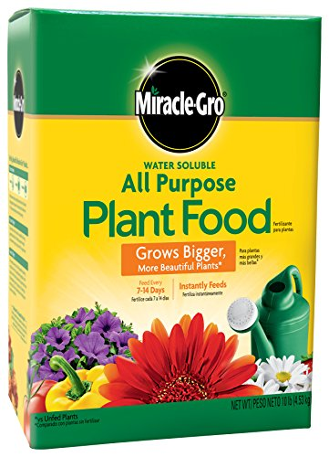Miracle-Gro Water Soluble All Purpose Plant Food, 10 lbs (Best Thing To Put In Christmas Tree Water)