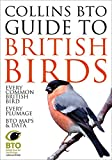 Collins BTO Guide to British Birds