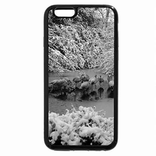 iPhone 6S Plus Case, iPhone 6 Plus Case (Black & White) - Flamingos and winter