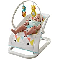 Fisher-Price Fun and Fold Bouncer