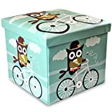 Rland Kids Toy Storage Ottoman Folding Trunk Toy Chest for kids Unisex Large 15'x15