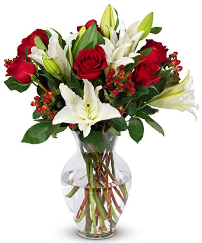 Benchmark Bouquets Red Elegance, With Vase (Fresh Cut Flowers)