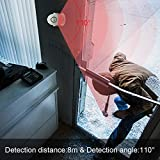 CPVAN Motion Sensor Alarm, Wireless Infrared Home