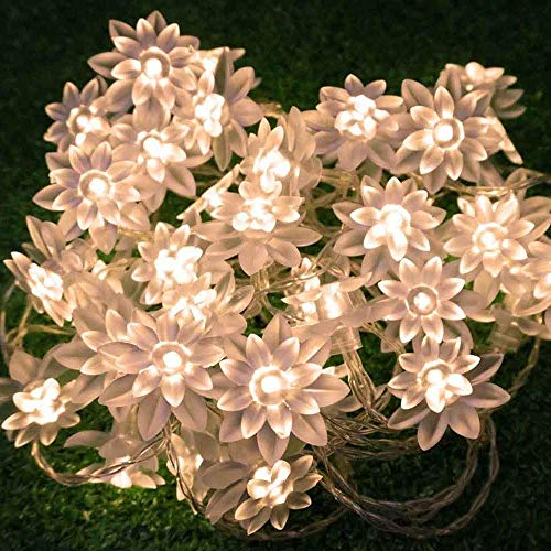 echosari LED String Lights 4M/13feet 40 LED Lotus Flower for Chrismas, Party, Wedding, Indoor, Garden Décor (Warm White)]()