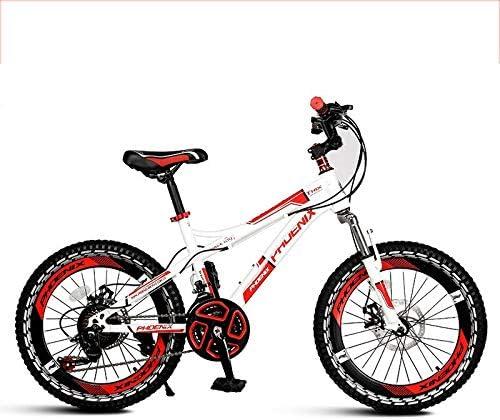 QunWang Bicicleta para Niños Velocidad única/Velocidad Variable ...