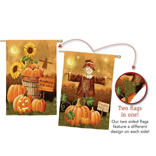 Evergreen Suede Pumpkin Patch for Sale Two Sided House Flag, 29 x 43 inches Review