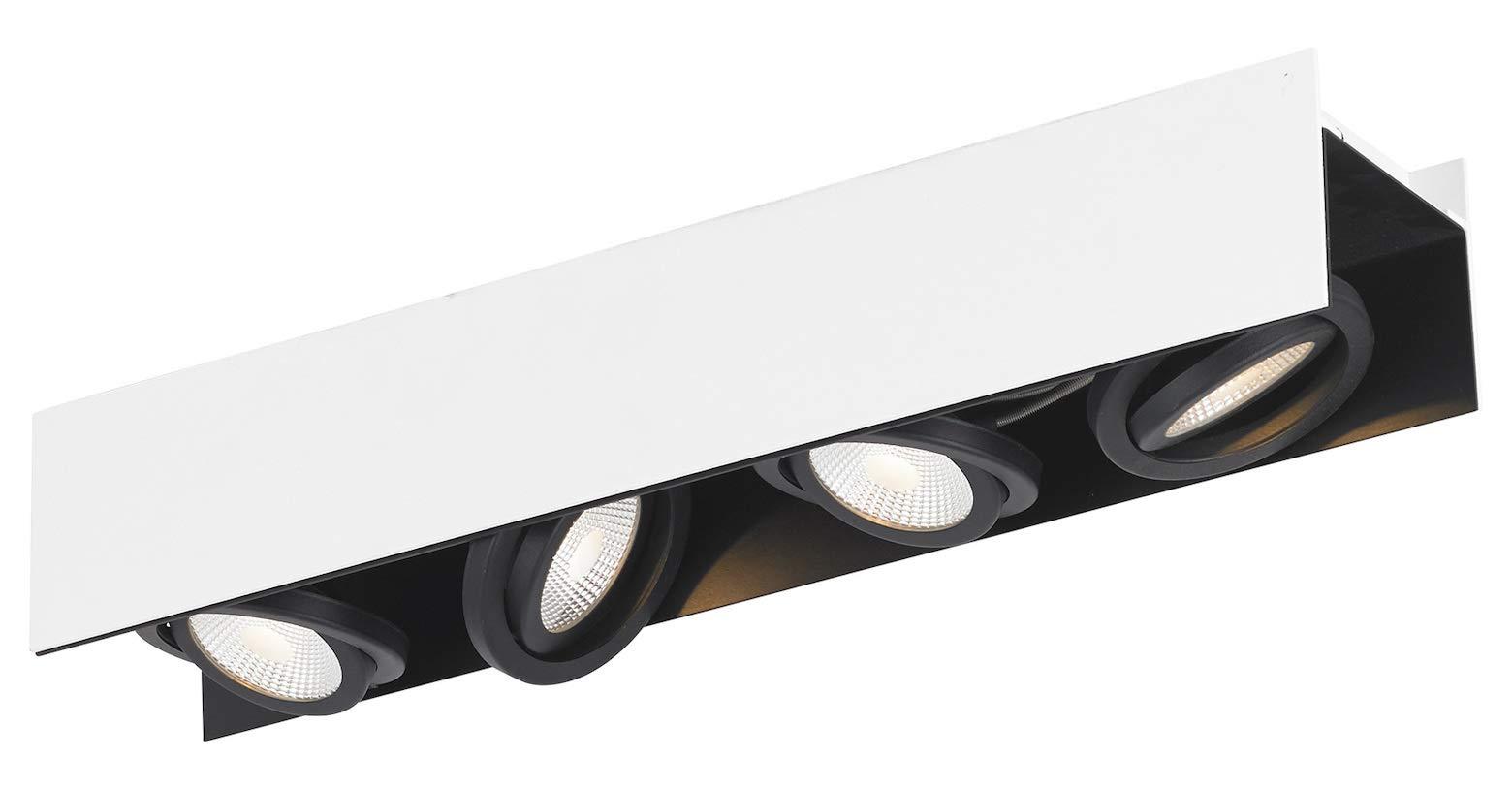 Vidago 4-Light Track Light in Black/White