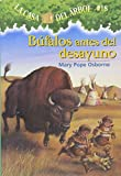 Annie and Jack travel through time and space to the Great Plains in the 19th century. There they meet a Lakota boy and his family, but just when they go out to play, they find themselves in the middle of a buffalo stampede! How will they stop...