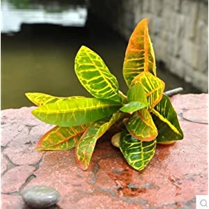 FYYDNZA 1 Pc Yellow Gold Artificial Plants Large Leaf Trees For Home Decoration 93