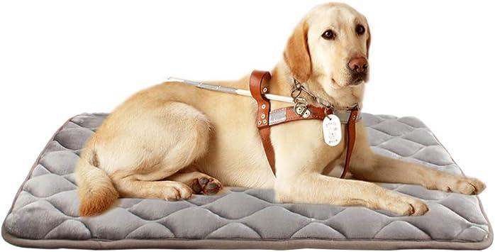 Amazon.com: Furrybaby - Colchoneta para cama de perro, suave ...