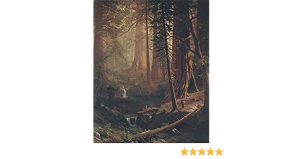 Bierstadt Giant Redwood Trees of California Wood Framed Canvas Print Repro 8x10