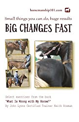 Big Changes Fast (What Is Wrong with My Horse? Book 11) (English Edition)