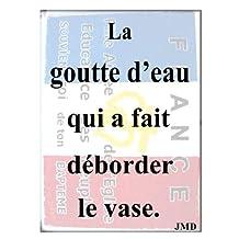 La Goutte d'eau qui a fait déborder le vase (French Edition)