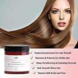 Cel Biotin Argan Oil Keratin Deep Conditioning Hair Mask For Dry Damaged Hair and Healthy Hair Growth – For Dry, Damaged, Thinning Hair – Thick, Smooth, Shiny Hair – Made Cruelty Free In The USA – Women & Men