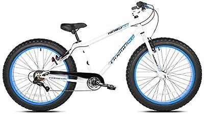 Takara Nobu Fat Bike, 26-Inch