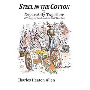 Steel in the Cotton Audiobook
