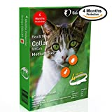 Dog Flea Treatment Collar - Beloved Pets Flea&Tick Collar (100% Safe and effective) - Flea Control Collar for Cats and kittens - Unique formula for quick and long lasting protection, Control & Enhanced Defence - Kills Flea,Ticks