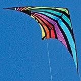 Dream On Dual line Stunt Kite