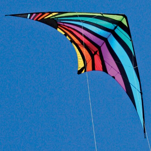 Dream On Dual line Stunt Kite by Skydog