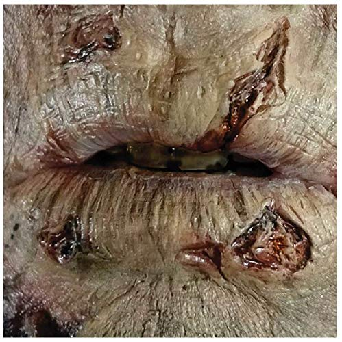 Fancy Me 3D Realistic Special FX Zombie Rotting Mouth Gore Wounds Scars Bites Halloween Make Up Glue & Latex Free Prosthetic Transfer (Zombie Rotting Mouth) -