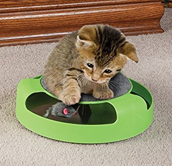 Resulzon Kitten Cat Games Toy With Fun Catching Rotating Spinning Mouse Scratch Pad