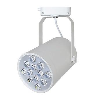 12W COB de Escena Focos - LED Blanco Cálida 3000K 1200lm 24° Beam, Iluminación