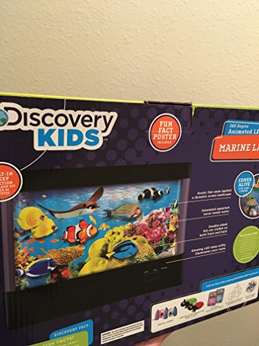 Discovery Kids Animated Tropical Fish Marine Lamp by Discovery Kids (Best Homemade Halloween Costumes)