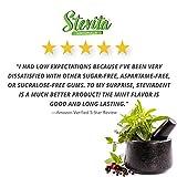 Stevita SteviaDent Sugar-Free Gum - Natural Peppermint Flavor (12 Pack) - 12 pieces - Supports Oral Health - USDA Organic, Non GMO, Vegan, Gluten Free - 144 Servings