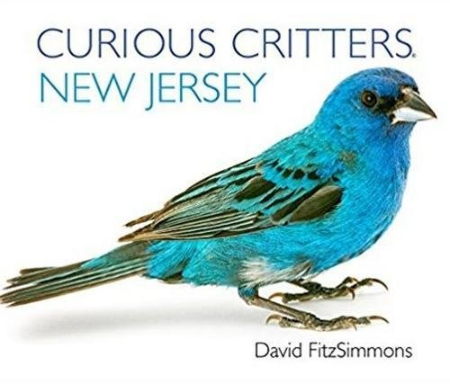 Download Curious Critters New Jersey (Curious Critters Board Books) PDF