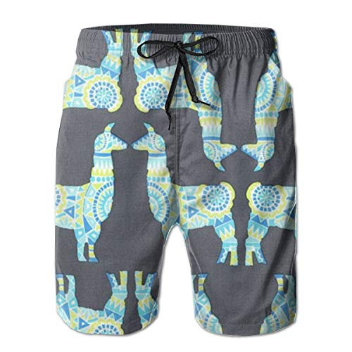 Jiqnajn6 Llama Rama Spring - Michael Miller Men's Swim Trunks Quick Dry Summer Surf Beach Board Shorts with Mesh Lining/Side Pockets