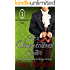 Her Unconventional Suitor (The Unconventional Suitor Book 1)