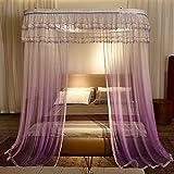 QIXIAOTING Summer High-Grade Mosquito Net Gradient, Drawstring Guide Mosquito Net Gradient Purple - Drawstring Guide 1.5 M [5 Feet] Bed