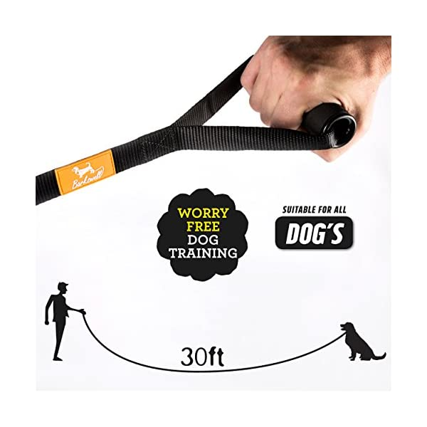 Dog Training Lead for Dogs and Puppies - 30 Foot Long with Padded Foam Barrel Handle - Free Carry Bag - Made from Strong Nylon - 1 Inch Wide 3