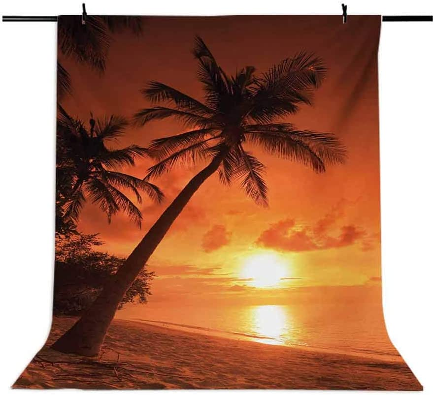 10x15 FT Backdrop Photographers,Twilight Dusk at Sandy Beach with Coconut Palms Maldives Summer Panorama Background for Baby Shower Birthday Wedding Bridal Shower Party Decoration Photo Studio