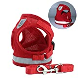 Dog Harness Step-in Mesh Dog Puppy Vest Harness with Leash for Small Dogs Chihuahua Yorkies Red