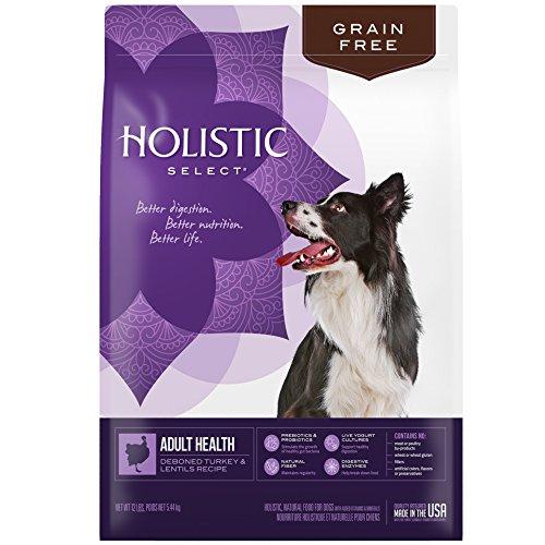 Holistic Select Natural Grain Free Dry Dog Food, Deboned Turkey & Lentils Recipe, 12-Pound Bag For Sale