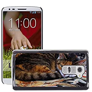 Hot Style Cell Phone PC Hard Case Cover // M00108655 Cat Domestic Cat Cat'S Eyes a // LG G2 D800 D802 D802TA D803 VS980 LS980