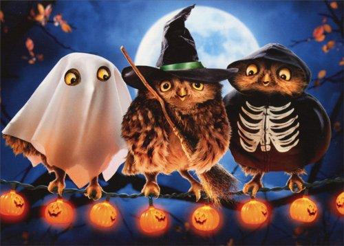 Halloween Owls - Avanti Funny Halloween (Halloween Trio Costume)