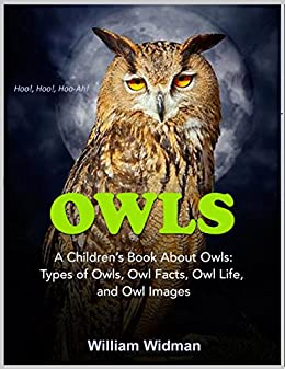 owls for kids a childrens book about owls owl facts life and - Owl Pictures For Kids