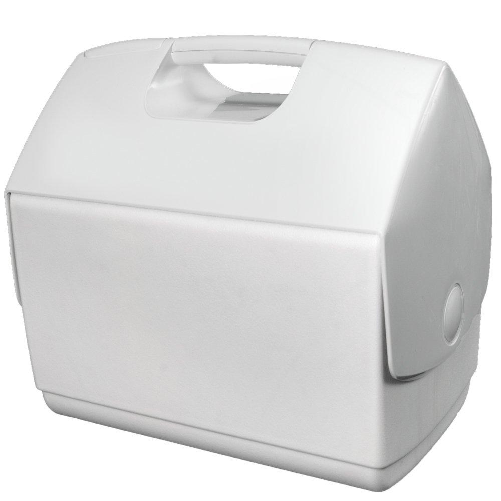 iGloo - Nevera Eisbox 15,2 L Premium White Edition: Amazon.es ...