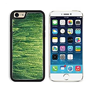 Closeup Grass Wheat Seeds Texure Land Punktail's Collections iPhone 6 Cover Premium Aluminium Design TPU Case Open Ports Customized Made to Order