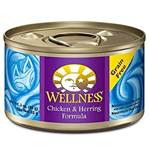 Wellness Complete Health Natural Canned Grain Free Wet Cat Food, Chicken & Herring Pate, 3-Ounce Can (Pack of 24) 30