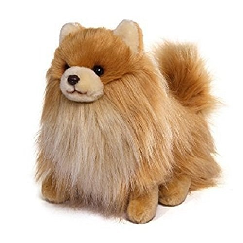 White Pomeranian - Gund Boo & Buddy Plush Stuffed Dog Toy Cutest Dog in the World (Buddy)