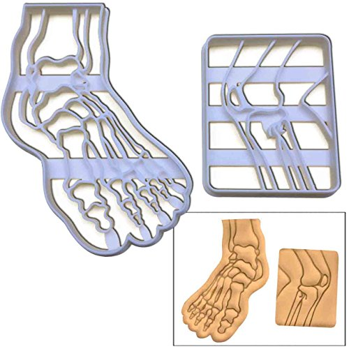 SET of 2: Human Foot Bone cookie cutter and X-Ray Knee Bone cookie cutter, 2 pcs, Ideal for Medical themed party